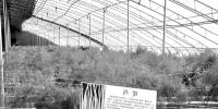 磴口:农业绿色发展实现多点突破 - 正北方网